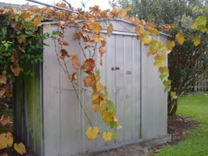 Traditional Metal Shed.JPG